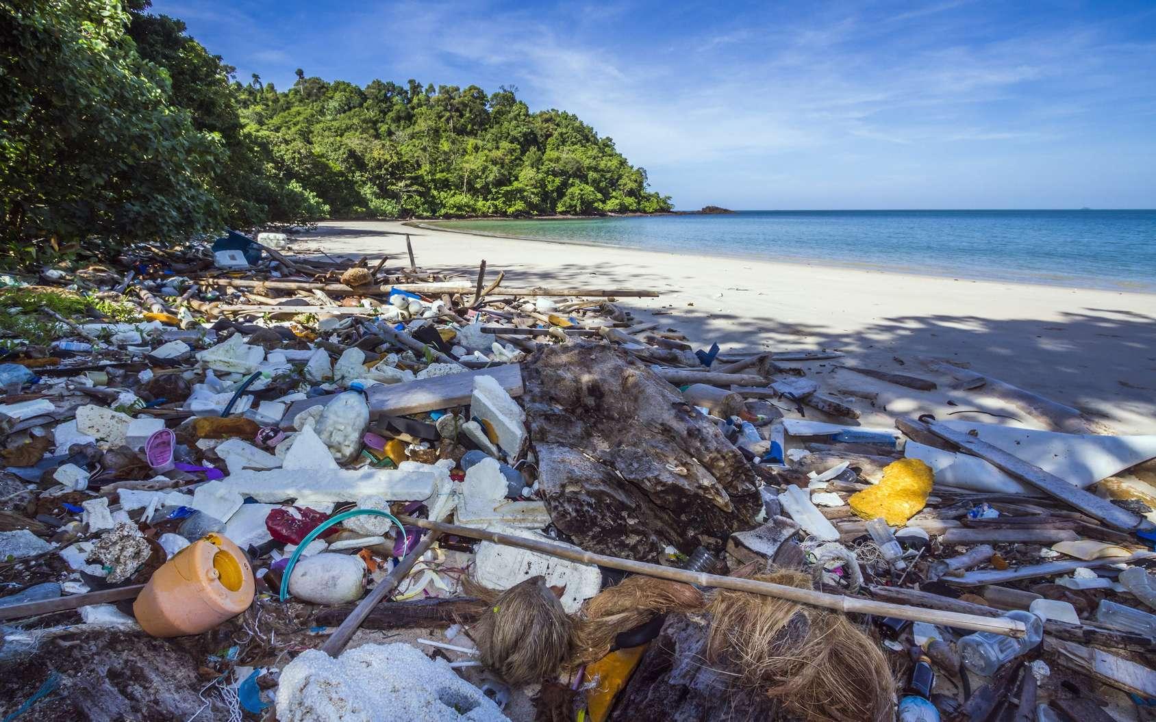 plage déchets plastique