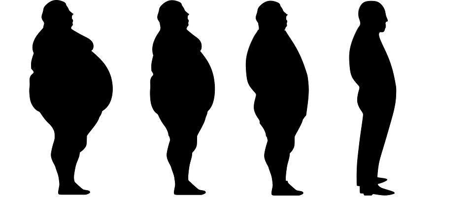 perte de poids evolution