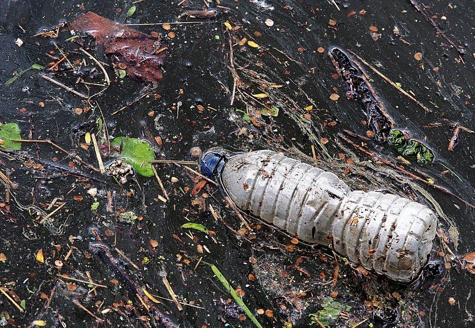 déchets bouteille plastique