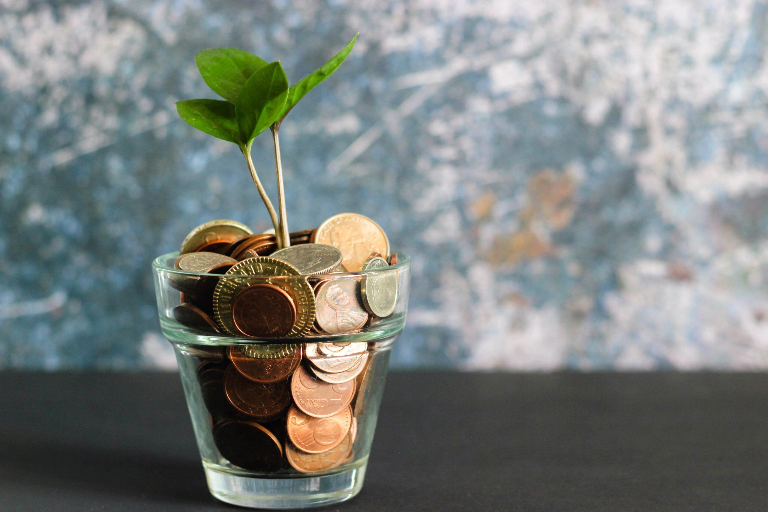 investissement eco responsable
